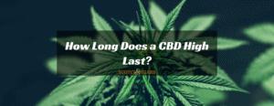 How Long Does a CBD High Last?